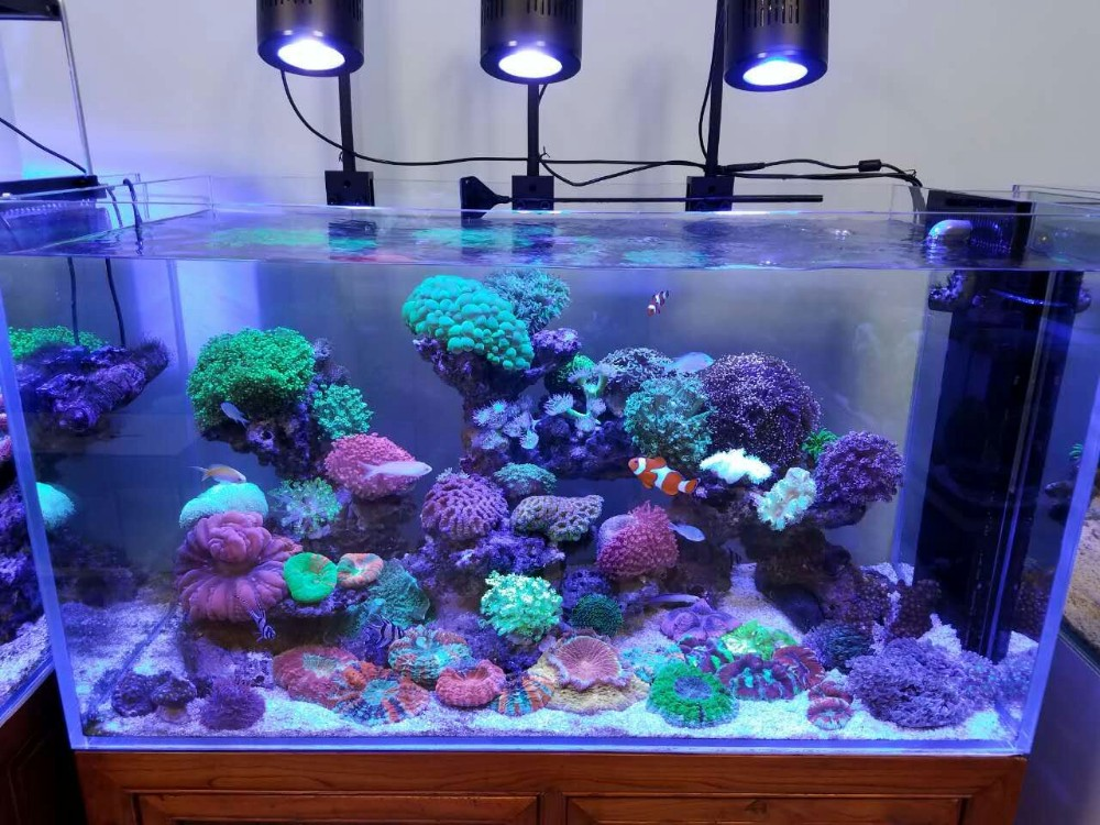 2017 Best 2ft 120w Nano Reef Aquarium Led Lighting