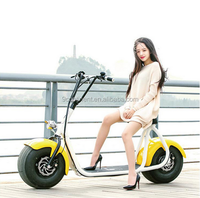 2018 1000w 40km city cocoo electric golf scooter