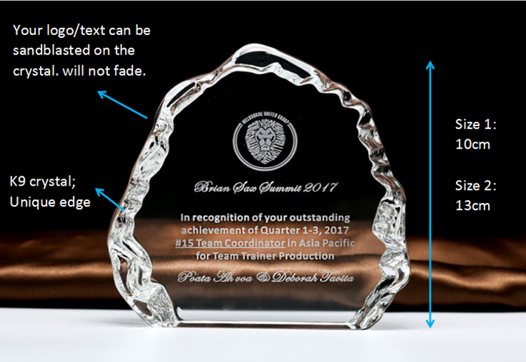 Unique K9 Crystal Shield Trophy Award for Corporate Gift Souvenirs HJT0056