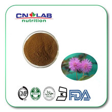 Hot selling product mimosa pudica powder/mimosa hostilis extract from GMP Factory