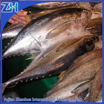 Sell seafood whole yellowfin tuna price wholesale buy for Tuna fish price