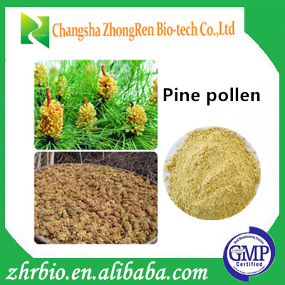 Free sample Natural Cell-broken Cell Cracked Wall-broken cell-broken Pine pollen