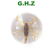 Clear Resin Ball Insects Dried Scorpion In Acrylic Factory