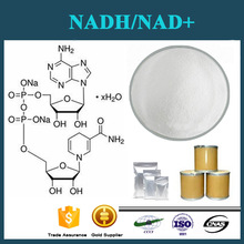 CAS No.:53-84-9 pharmaceutical grade Nicotinamide adenine dinucleotide, NAD+/NADH,NADP+/NADPH/NMN C21H27N7O14P2