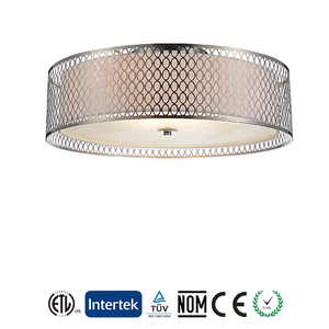 Indoor modern simple ceiling lamp manufacturer's decoration ceiling lamp