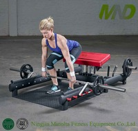 fitness equipment manufacturer Glute Exercises Gym equipment