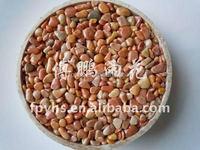 beautiful gravel pebble stone for fish tank