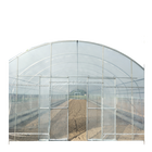 Single span hoop greenhouse tunnel for vegetables or flowers