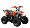 Cheap 110cc chinese atv quad in 2018 new year for sale