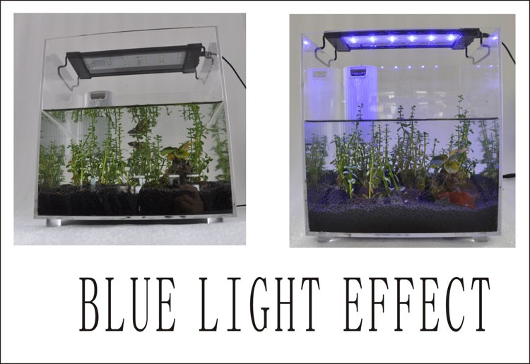 Switch Control on/off automatically freshwater/saltwater Aquarium LED