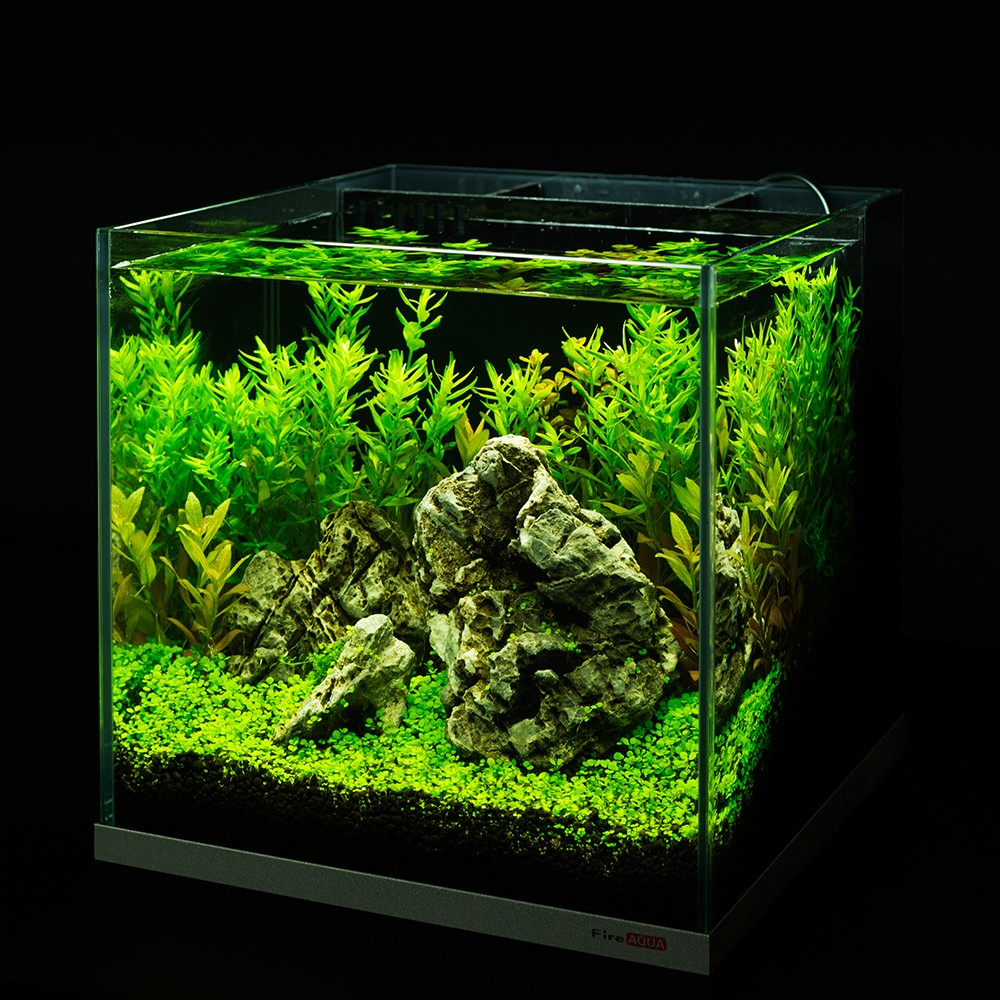 Mode stijl super wit tank terug Filter Aquarium
