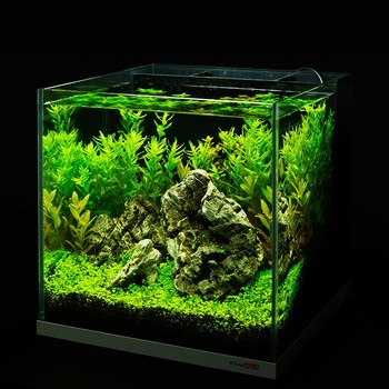 fashion style super white tank back Filter Aquarium