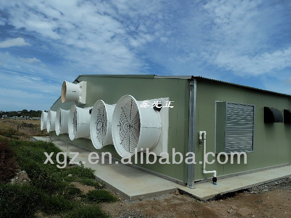 layer modern best price automatic chicken shed poultry farm in angola