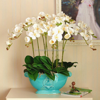 High quality real touch the laves from artificial phalaenopsis orchid flower buy direct from the manufacturer