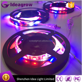 Shenzhen hydroponic led strips plant grow tube lights indoor garden grow tube tent greenhouse used grow  sc 1 st  Alibaba & Shenzhen Hydroponic Led Strips Plant Grow Tube Lights Indoor ... azcodes.com