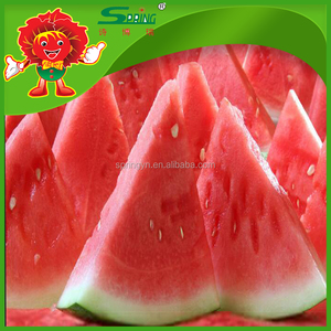 cheap wholesale price fresh seedless watermelon best price for sale