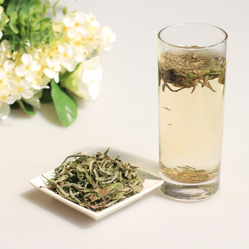 Best white tea brands Chinese EU standard loose bulk white peony Tea 6903 6900 - 4uTea   4uTea.com