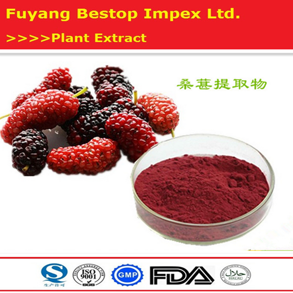 Sang shen 100% Organic Mulberry Leaf Or Mulberry Morus Alba Muberry Leaf Extract