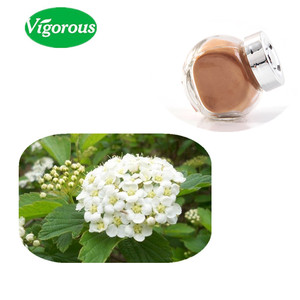 Koreans like Meadowsweet Extract Powder with 5% Salicylic acid