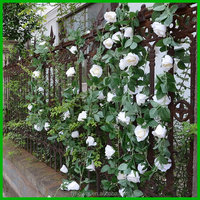 Factory best selling artificial ivy vine garland