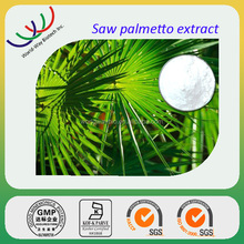World-way Natural Saw Palmetto Extract / Herbal Healthy Saw Palmetto Fruit Extract Powder with Fatty acid 25%-45%