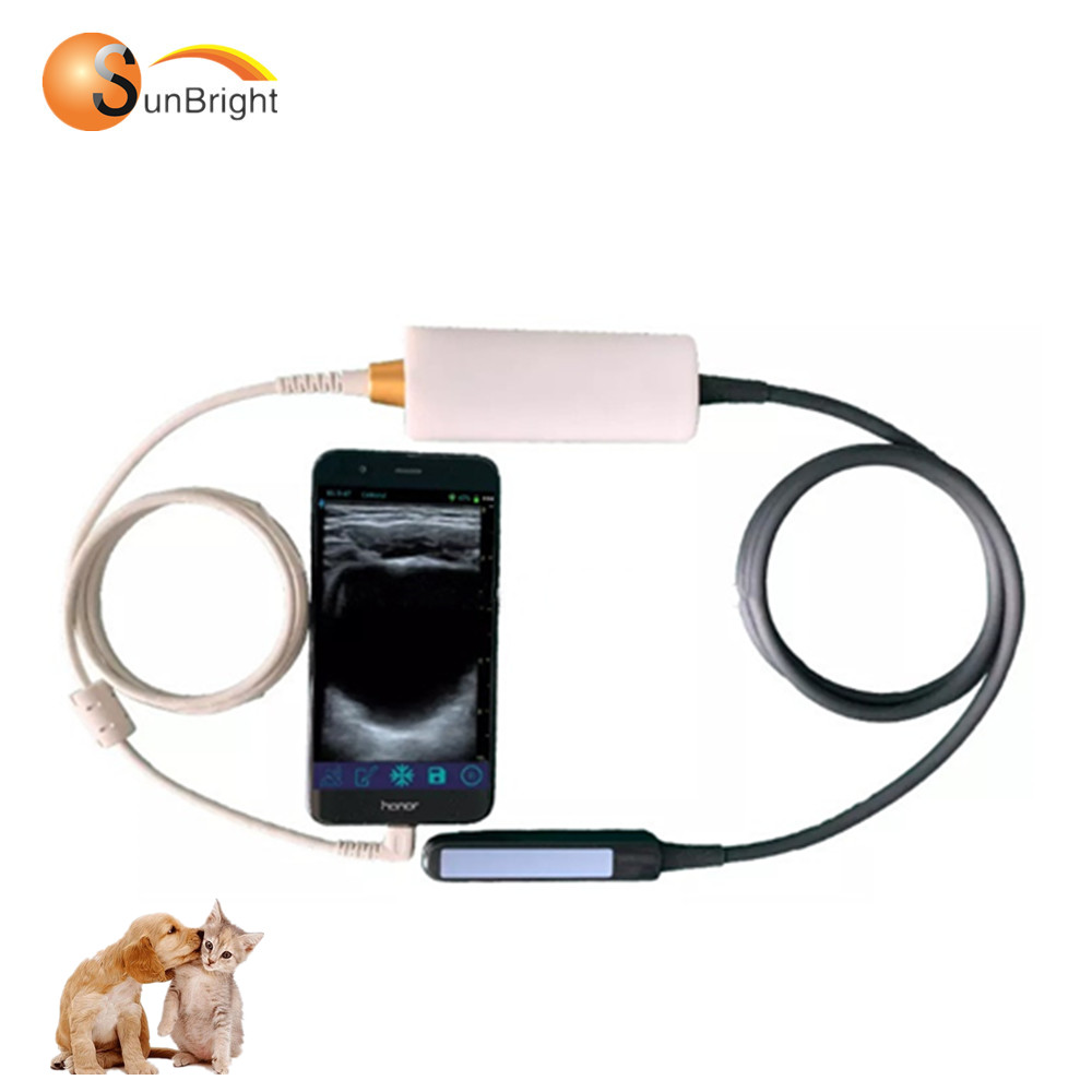 Great image handheld USB 6.5Mhz rectal veterinary use probe for computer laptop pad