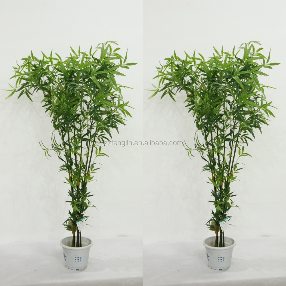 high quality wholesale artificial black bamboo trees for. Black Bedroom Furniture Sets. Home Design Ideas