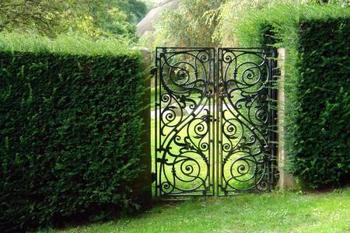 Superbe Hot Sale Quality Ornamental Iron Garden Gates / Double And Single Gate