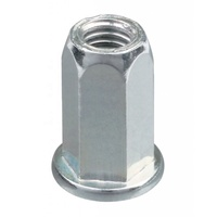 M6 M8 M10 Steel Plated Zinc Hex Rivet Nut