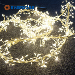 Evermore Warm White LED Naked Copper Wire String Light