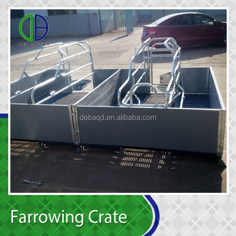 PVC panel supplier pig farm use Farrowing Sow Crates