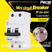 Mini size thermal magnetic overload 2P MCB electrical circuit breaker