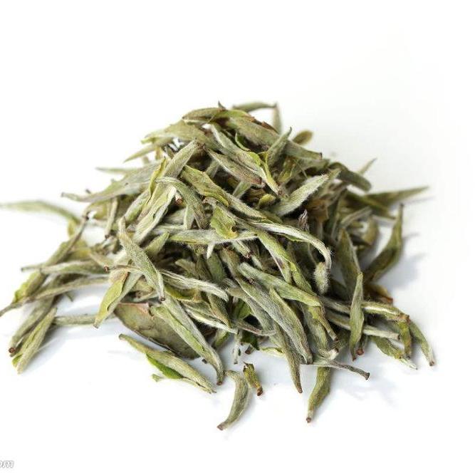 Fine Songluo Tea Top grade white tea EU standard Sliver Needles bai hao yinzhen - 4uTea   4uTea.com