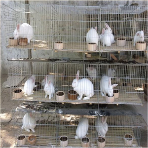 Metal cheap commercial wholesale rabbit cage breeding