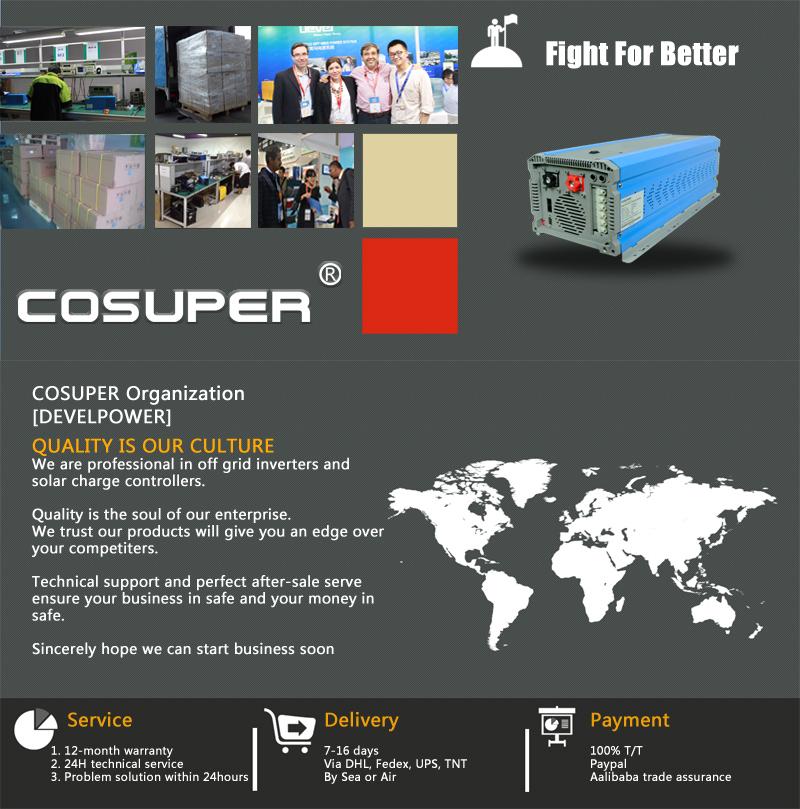 1000 Watt Solar-ladegerät Hybrid Solar Wechselrichter Dc 12 V Ac 220 ...