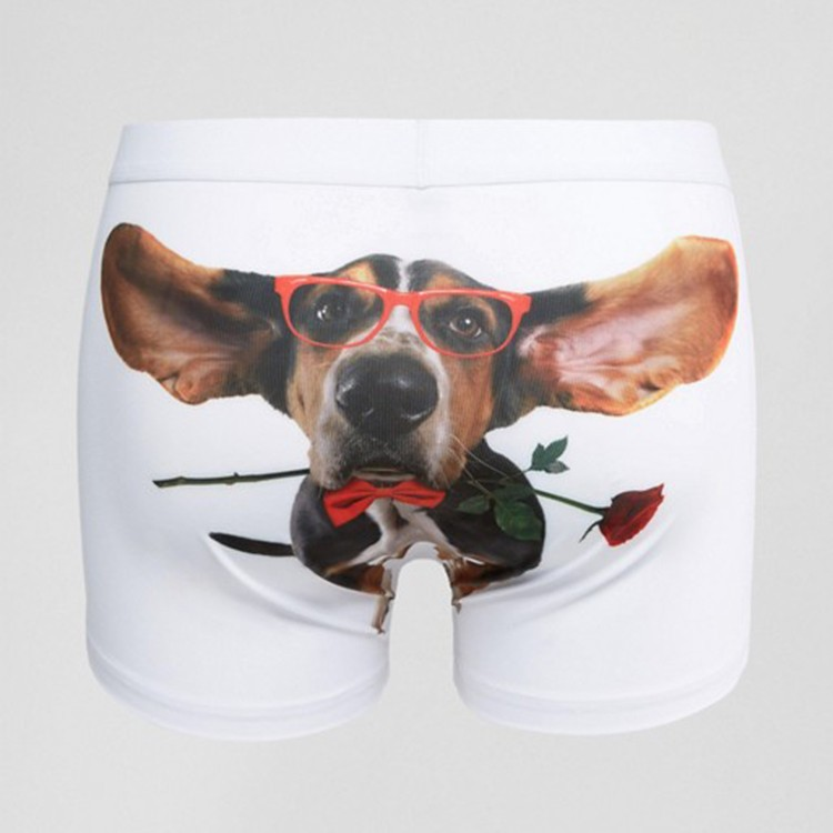 White teen male boxer briefs custom print underwear with dog on it