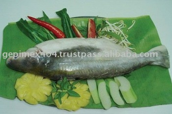 Frozen filet pangasius poissons, Fruits de mer