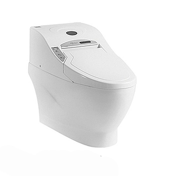 Astounding 541Tluxury Auto Operation High Quality Water Closet Electronic Toilet Buy High Quality Water Closet Electronic Toilet High Quality Water Closet Pabps2019 Chair Design Images Pabps2019Com