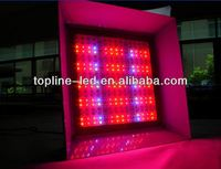 New inspiration 580w black star led grow light with 5band and 6band & High power 580w LED Grow Light(HY-G-580w)