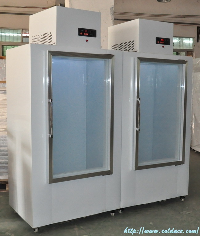 Dc-300 Solid Door Ice Merchandiser,Used Ice Bag Storage Freezer ...