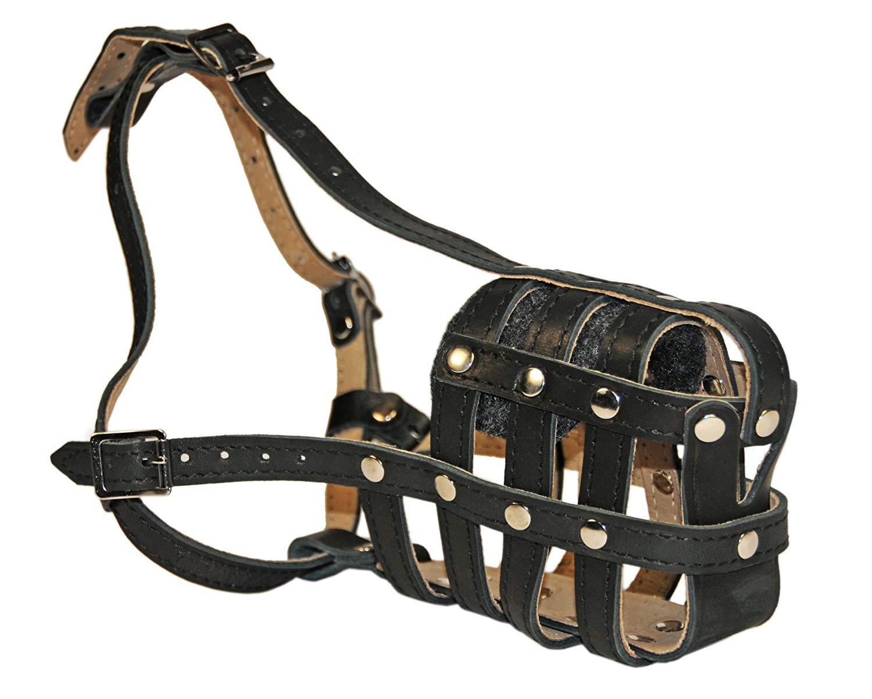 Dean & Tyler D&T M ROYAL LB BK-TN EB1 English Bulldog Royal Basket Leather Muzzle, Large, Black/Tan