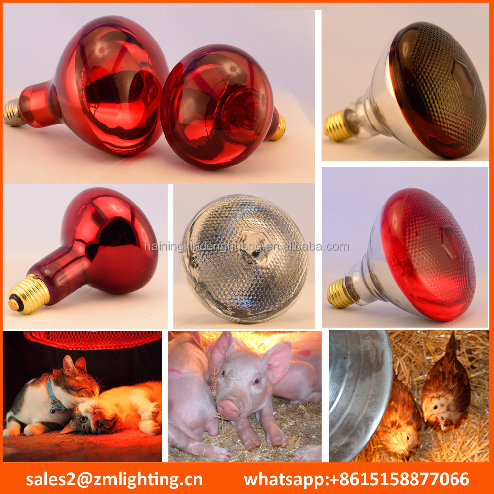 Low Prices infrared lamp R95 R125 PAR38 100W 150W 175W 200W 250W 275W animal chicken pig pet therapy infrared heating bulb