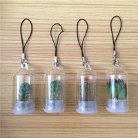 UCHOME 2019 Factory promotion gift hot sale pocket mini pet tree key chain baby plant