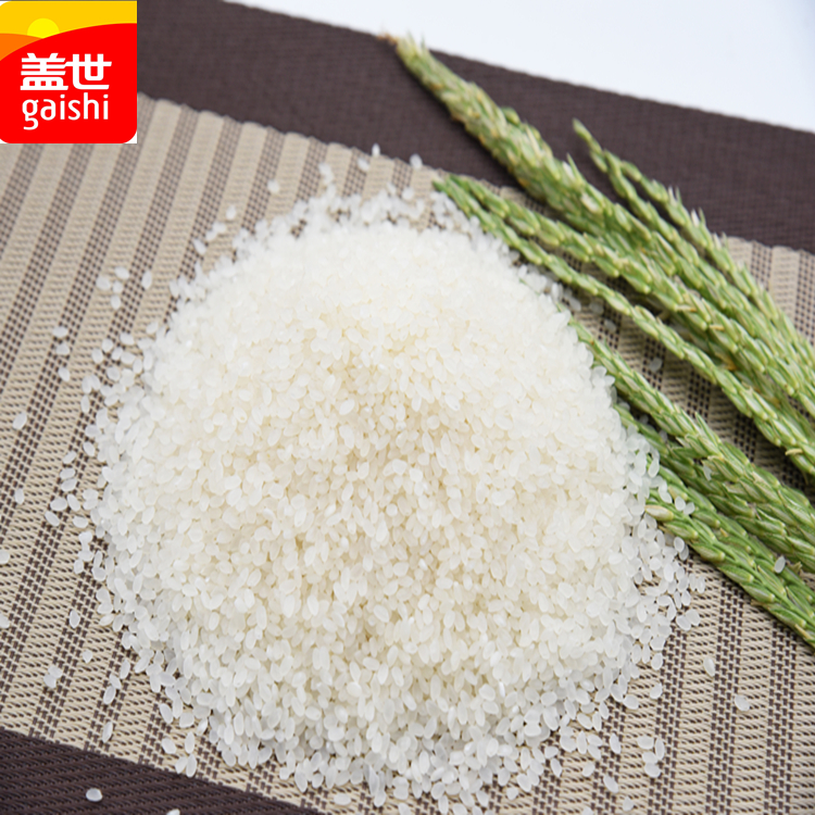 2014 Short grain California Calrose White Sushi Rice Brands