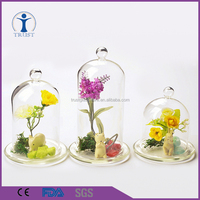 China Factory home decor customized terrarium clear bell jars glass domes wholesale