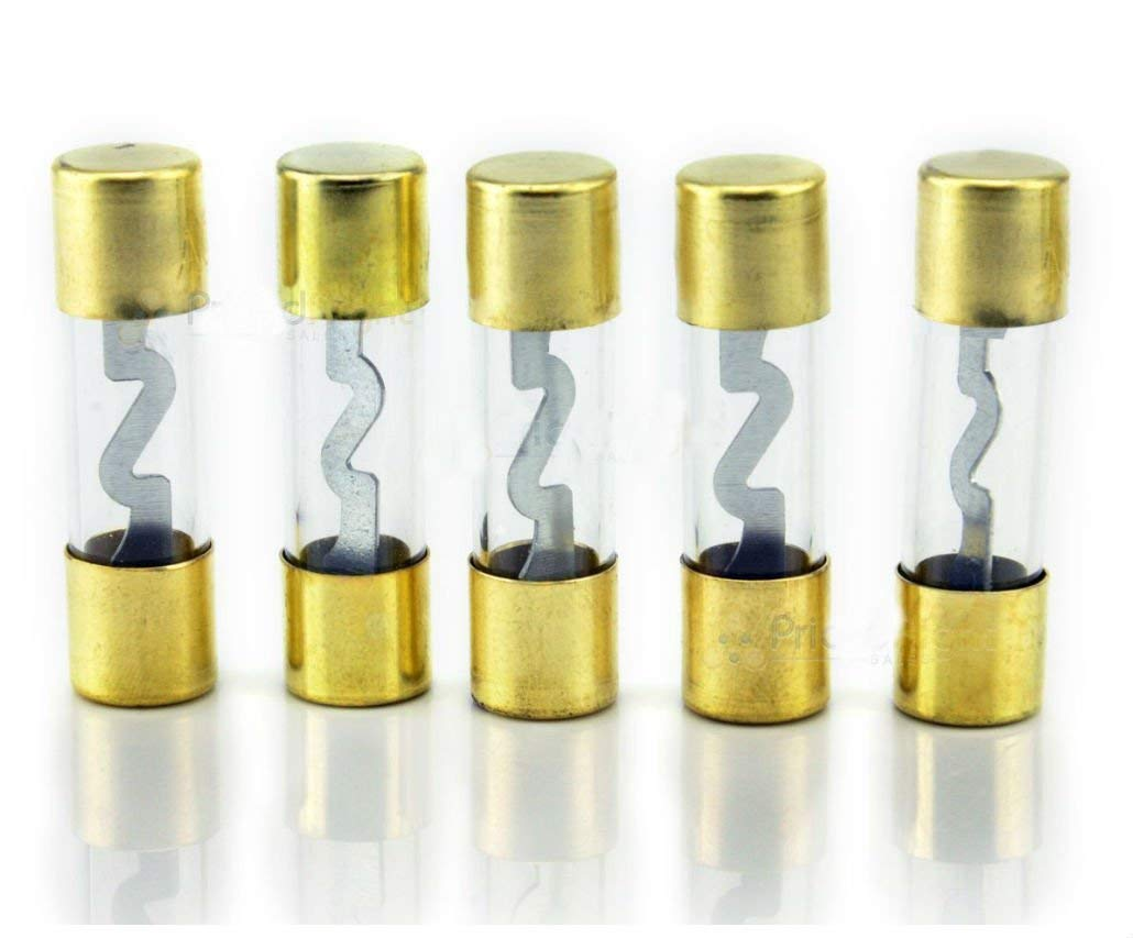 Pack of 5 Car Audio Amp Amplifier Glass 100 A AMP AGU Gold Plated Fuse