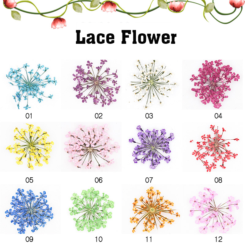 Fashion New 3D UV Gel Stickers Decals Tips Manicure DIY Nail Art Decoration Dried Dry Flower For Nail Salon
