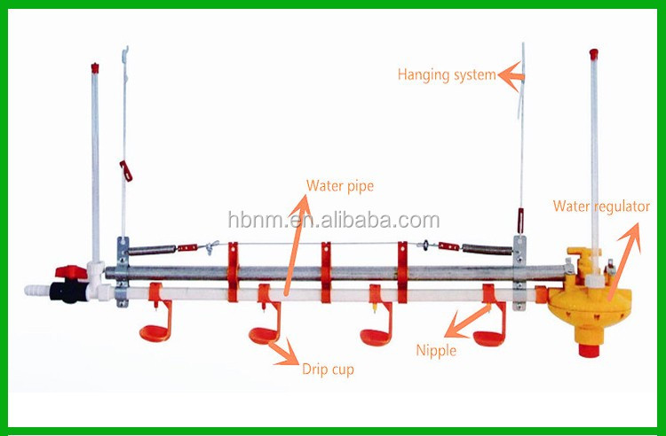 Automatic Chicken Waterer - Poultry Watering Systems