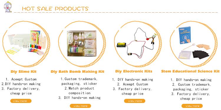 DIY Peralatan Elektronik Spy Science Intruder Alarm Kit
