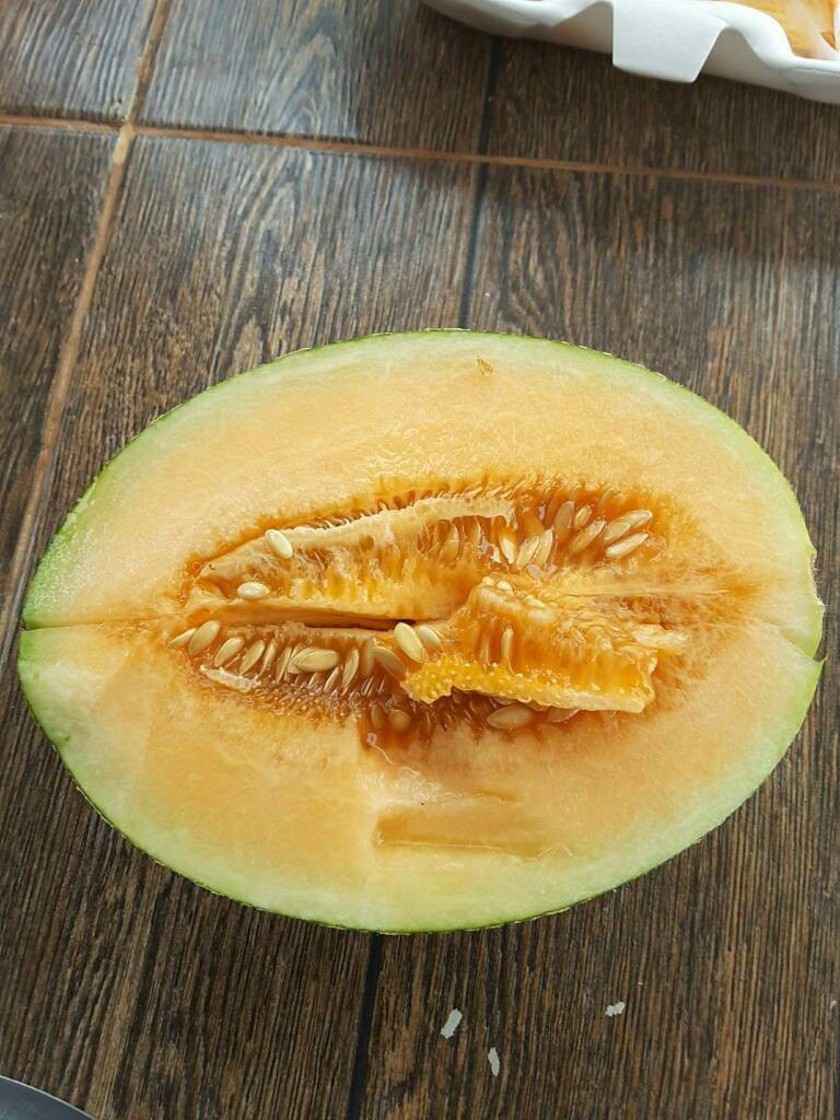 Hybrid Super Sweet Melon Seeds for growing-Golden Phoenix